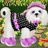 Cute Puppy Dressup Free Game
