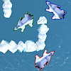 Polar Bear Racing Free Game