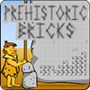 This is a tetris style game where you must set the lines using the stone bricks. There are 25 levels of difficulty.